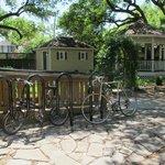 My bike (its the foldie) & backyard