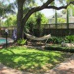 Pool & hammock