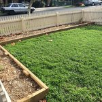 New Native Front Gardens completed in Coate Ave