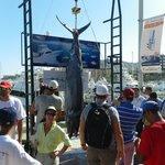 Bisbee's Marlin Derby