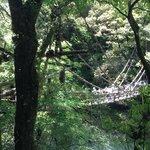 外から見た橋