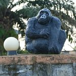 Gorilla on hotel wall