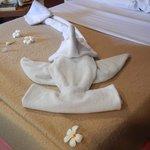 towel art by Sham in housekeeping