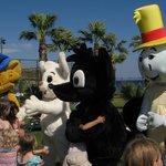 Hver dag kl. 16.00 var alle dyrene ude at lege med børnene og især Bamse var populær