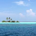 A hideaway island.....lush!!!