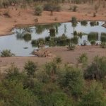 View of the waterhole