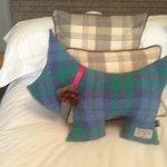 Harris Tweed Dog on bed!