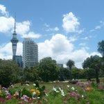 Auckland Turm und Park