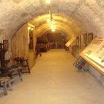 Exhibition cellar