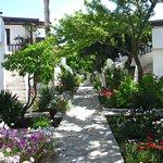 The beautiful gardens around the hotel