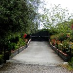 B&B Villa Maria Giovanna - giardino (uscita)