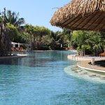 Pool Swim-up Bar
