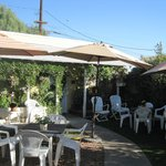 The backyard - this place is truly an Oasis in the Desert