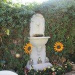 A nice fountain in the backyard