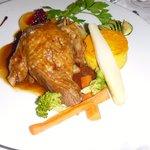 Canard(duck) main