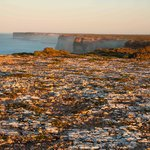 Nullarbor Cliffs morning light