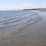 キレイな浜辺
