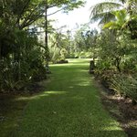 Surrounding private gardens