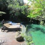 zicht op tuin en zwembad
