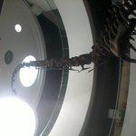 โครงกระดูกไดโนเสาร์จำลอง