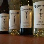 Award winning wines including Sauvignon Blanc