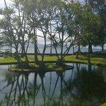 Hilo beach area