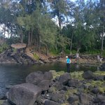 Hilo beach area