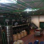 Área de fabricação do vinho