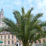 grand place lille - mercato fiori 2