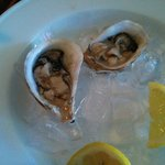 Oyster $3.75 each