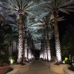 Walkway to the pool at night