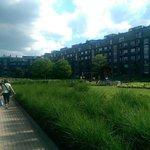 Gardens and playground.