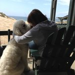 Enjoying this beachside haven with my doodle!