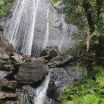 La Coca Falls - El Yunque