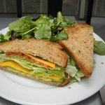 vegetarian sandwich with side green salad