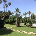 sehr schöner Hotelgarten