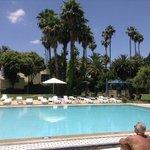Ibis Fès,Hotelgarten