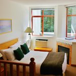 Queen Studio Living Area/Bedroom Area