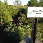 Cane Run Creek at the Legacy Trail