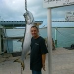 would have been great to catch this tarpon !