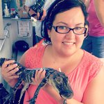 Holding a baby gator !