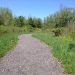 Sherwood Field Park - trail