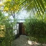 Bungalow jardin