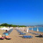 The hotel beach area and sunbeds