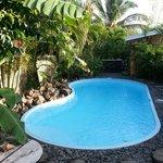 piscine dans un superbe jardin fleuri .