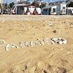 El Camping desde la Playa Paraíso