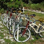 All bikes in good working order