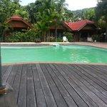 grüner pool