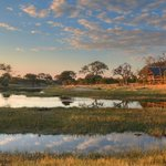 Belmond Savute Elephant Lodge is located on the banks of the Savute channel.