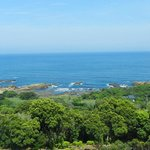 Yakushima Green Hotel view of the sea